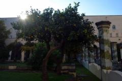 89.Santa Chiara